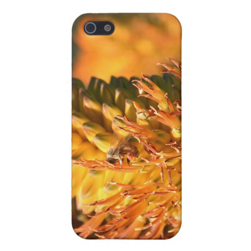 Bee Cases For iPhone 5