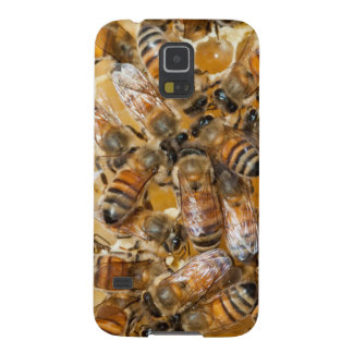 Bee keeping at Arlo's Honey Farm Galaxy S5 Cover