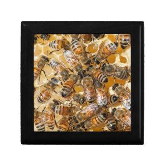 Bee keeping at Arlo's Honey Farm Gift Box