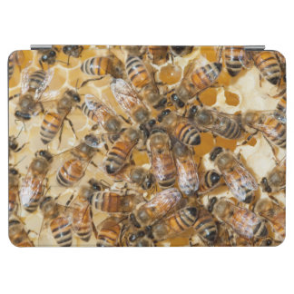 Bee keeping at Arlo's Honey Farm iPad Air Cover