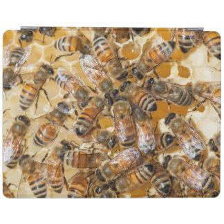 Bee keeping at Arlo's Honey Farm iPad Cover