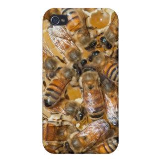 Bee keeping at Arlo's Honey Farm iPhone 4/4S Case