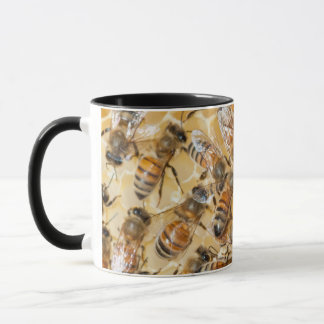 Bee keeping at Arlo's Honey Farm Mug