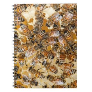 Bee keeping at Arlo's Honey Farm Note Books
