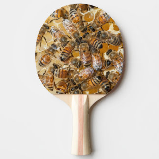 Bee keeping at Arlo's Honey Farm Ping Pong Paddle