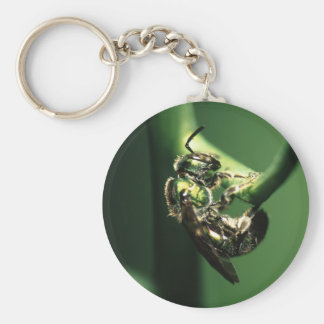 bee basic round button key ring