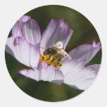 Bee Leaf Classic Round Sticker