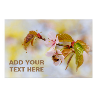Bee On A Cherry Flower Poster