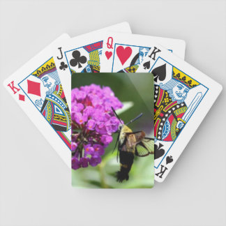 Bee on a Flower. Bicycle Playing Cards