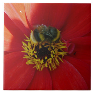 Bee on a red flower ceramic tile