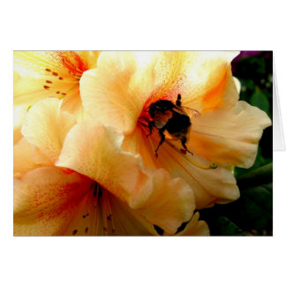 Bee on a Rhododendron - Card