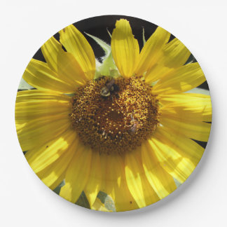 Bee on a Sunflower, Paper Plate. Paper Plate