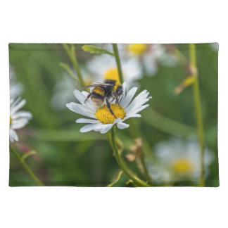 Bee on a white daisy placemat