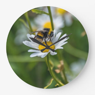 Bee on a white daisy wall clock