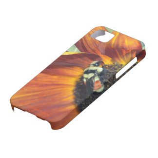 Bee on Flower iPhone 5 Cases