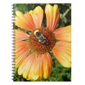 Bee on Gerber Daisy Note Book