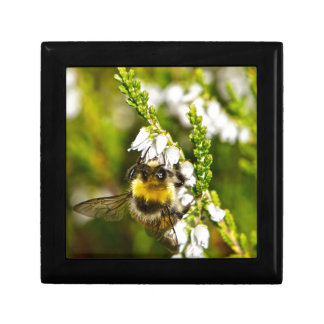 Bee on Lucky White Heather Gift Box
