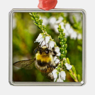 Bee on Lucky White Heather Silver-Colored Square Decoration