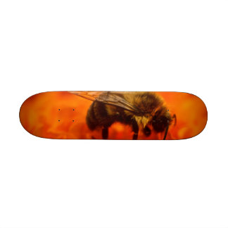 Bee on Orange Flower Skate Board Decks