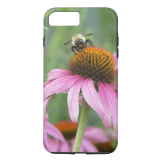 Bee on Purple Coneflower iPhone 8 Plus/7 Plus Case