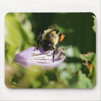 Bee On Purple Flowers Mousepad