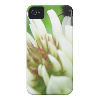 Bee on the Flower iPhone 4 Case