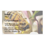 Bee On The Meyer Lemon Tree In My Balcony Business Card Templates