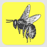 Bee Square Stickers