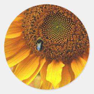 Bee Sunny Classic Round Sticker