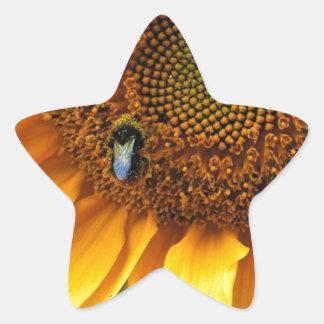 Bee Sunny Star Sticker