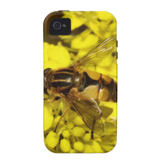 Bee & Yellow Flowers Vibe iPhone 4 Cover
