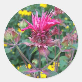 Beebalm Flower Stickers