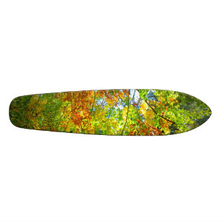 Beech Autumn Leaves. Skate Deck