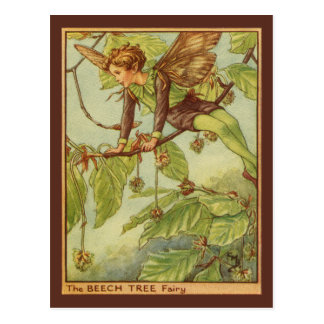 Beech Tree Fairy by Vision Studio Postcard