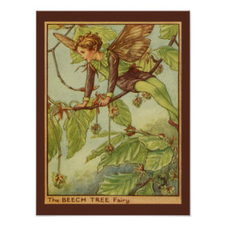 Beech Tree Fairy by Vision Studio Poster