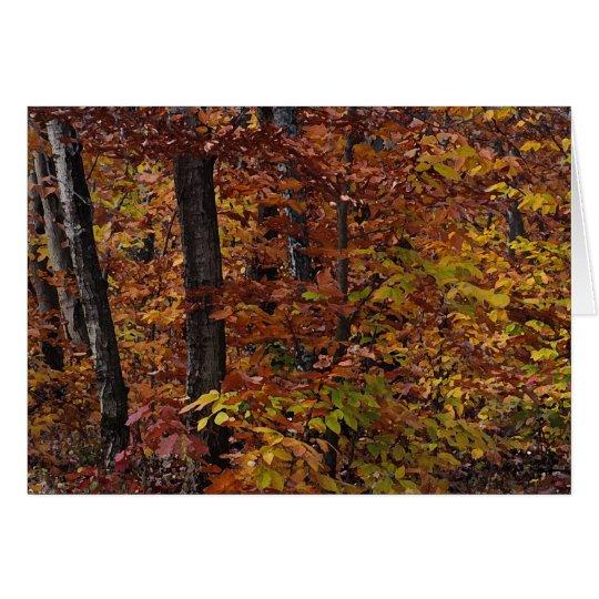 Beech Tree Forest Birthday Card