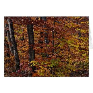 Beech Tree Forest Birthday Greeting Card