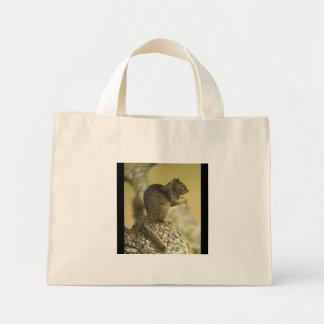 Beechey Ground Squirrel Bag