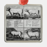 Beef, Veal, Pork, and Mutton Cuts, 1802 Ornament