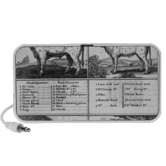 Beef, Veal, Pork, and Mutton Cuts, 1802 Portable Speakers