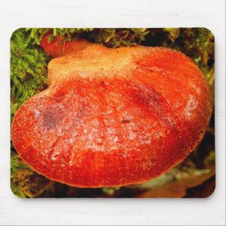 Beefsteak Fungus Mouse Mat