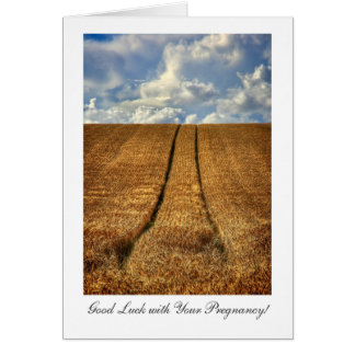 Been and Gone wheat field Good Luck with Pregnancy Card