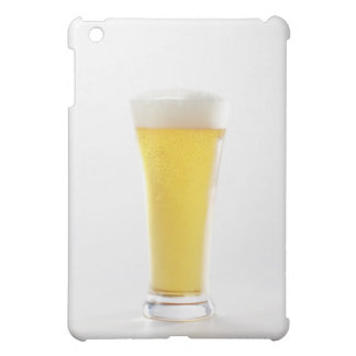 Beer 5 iPad mini cases