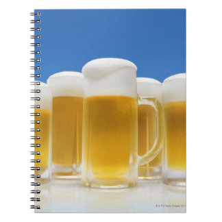 Beer 6 notebooks