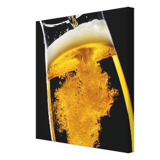 Beer been poured into glass, studio shot canvas print