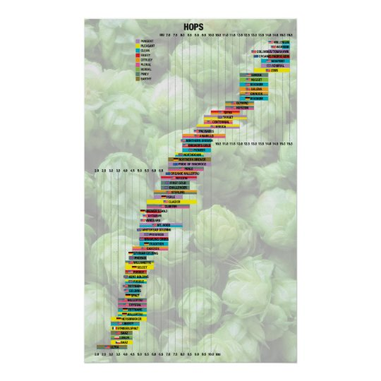 Beer By The Numbers – Hops Poster