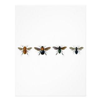 Bees 21.5 Cm X 28 Cm Flyer