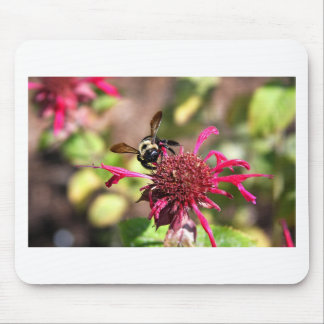 Bees and Blooms - Nothing is Wasted Mouse Pad