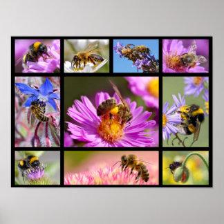 Bees and bumblebees mosaic poster