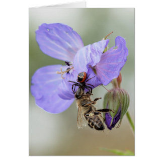 Bees check in, but they don't check out greeting card